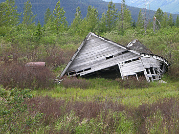 Portage Remnants Of 1964 Earthquake Along Seward Hwy Mile 80.1